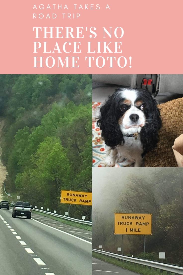 Agatha's Road Trip Part I