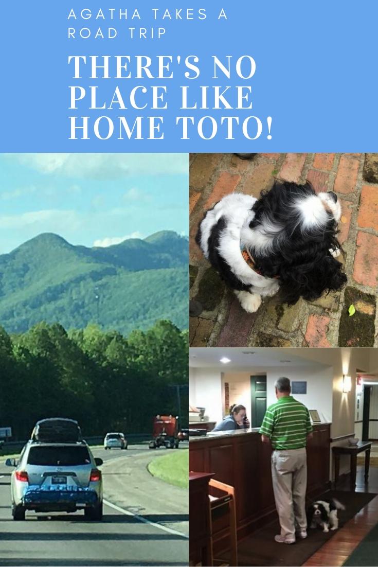 Agatha Road Trip Part 2