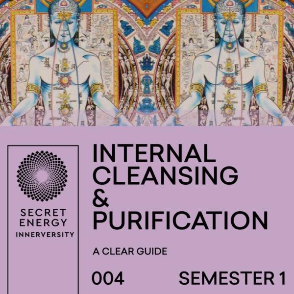 S1-INTERNAL-CLEANSING-600x600.jpg