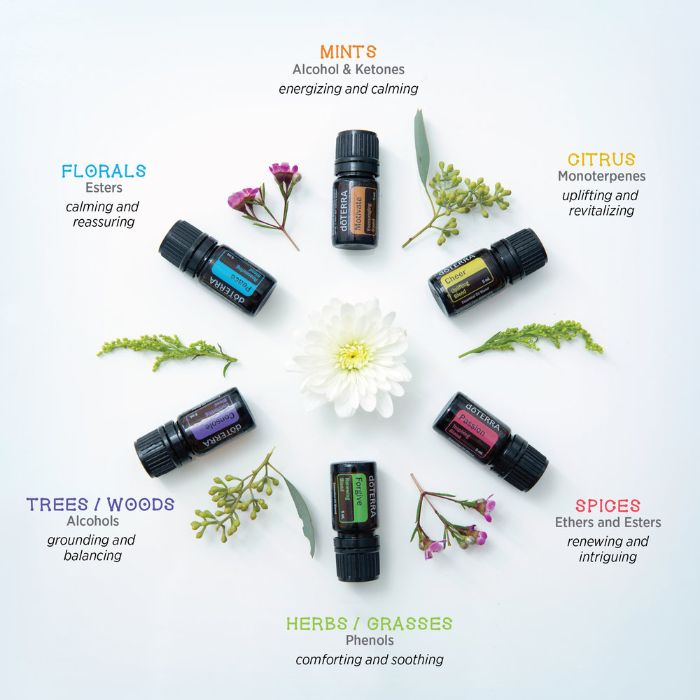 Essential Oils - The different Smells is caused by the different terpenes. Different terpenes have different effects on the body. Experiment with using different terpenes (essential oils) to get a unique profile for your every occasion!
