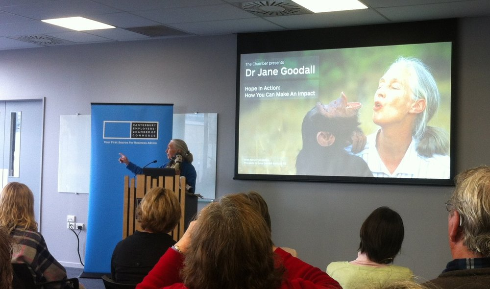 Jane Goodall speaking at the Chamber of Commerce in Christchurch