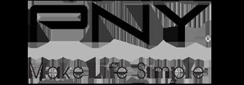 pny_logo_web.png