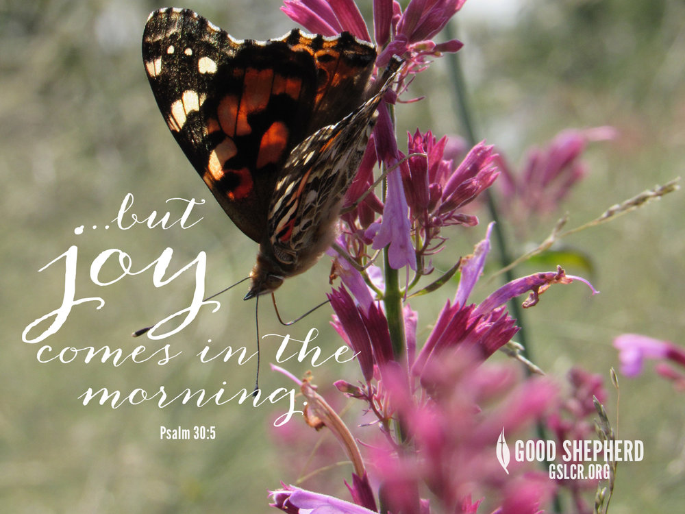 Psalm 30-5.jpg