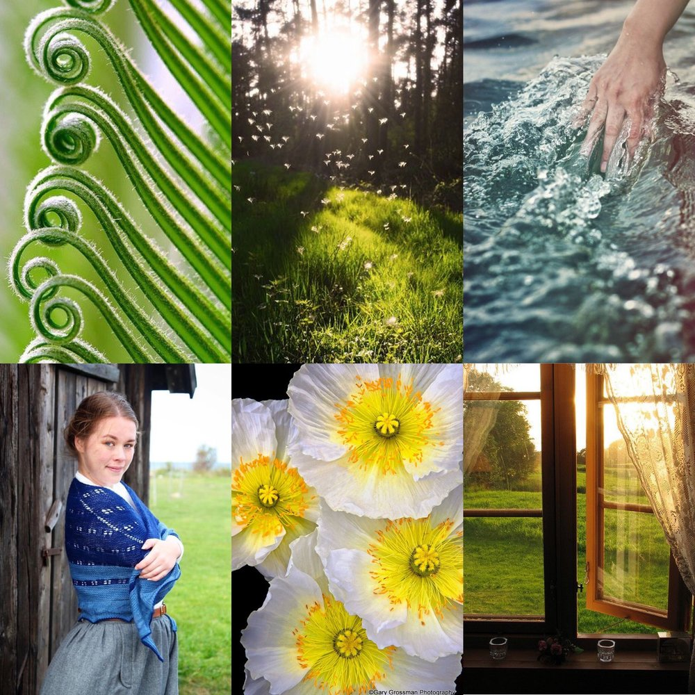 IMAGE SOURCES:  PLANT ,  MEADOW ,  WATER ,  GIRL ,  FLOWER ,  WINDOW