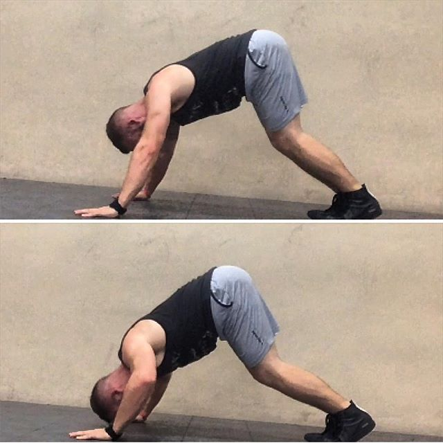 """I have no time for the gym gym, I have no equipment and I have no friends. Therefore I have no #shoulders.""😞 • Stop ✋️that nonsense ‼️ • • This exercise is one of my favorite #bodyweight shoulder exercises 😁. It may look simple but when you add eccentric focused, pause, or weight shifting reps, you can get great deltoid development 👌🏻 • • • Did I mention closed chain 🦍shoulder exercises improve scapular stability which will help rid your shoulder joint of Rice Krispy Syndrome (sounds like) 🕺🏼 • • • • #bodyweighttraining #workoutmotivation"