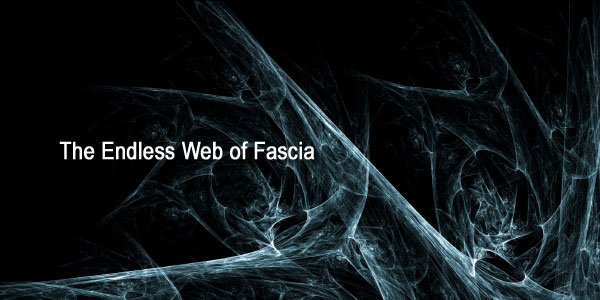 Endless-Web-of-Fascia.jpg