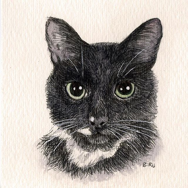 #catsofinstagram #blackcats #tuxedocat #fuzzy #kitty #painting #watercolors #ink #staedtler