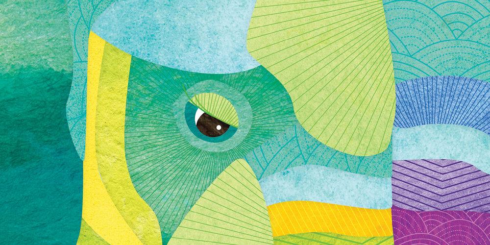 Shanti-sparrow-illustration14.jpg