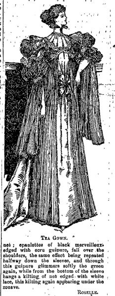 Ladies tea gown, 1895.