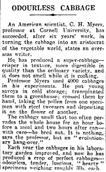 Article on the creation of an allegedly odourless 'super-cabbage'. Image: