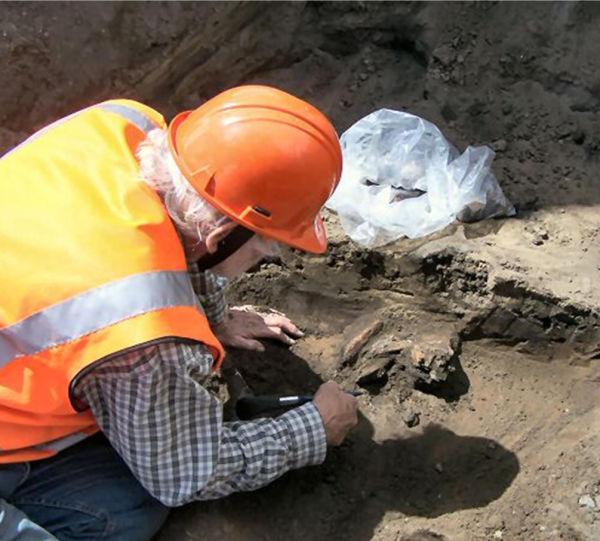 Michael Trotter excavating broken moa bones. Image: J. McIsaac.