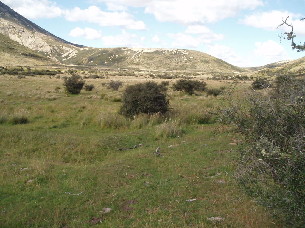 In the Edwards valley, with the remains of a sod hut and ditch and bank fence in the foreground. Image: K. Watson.