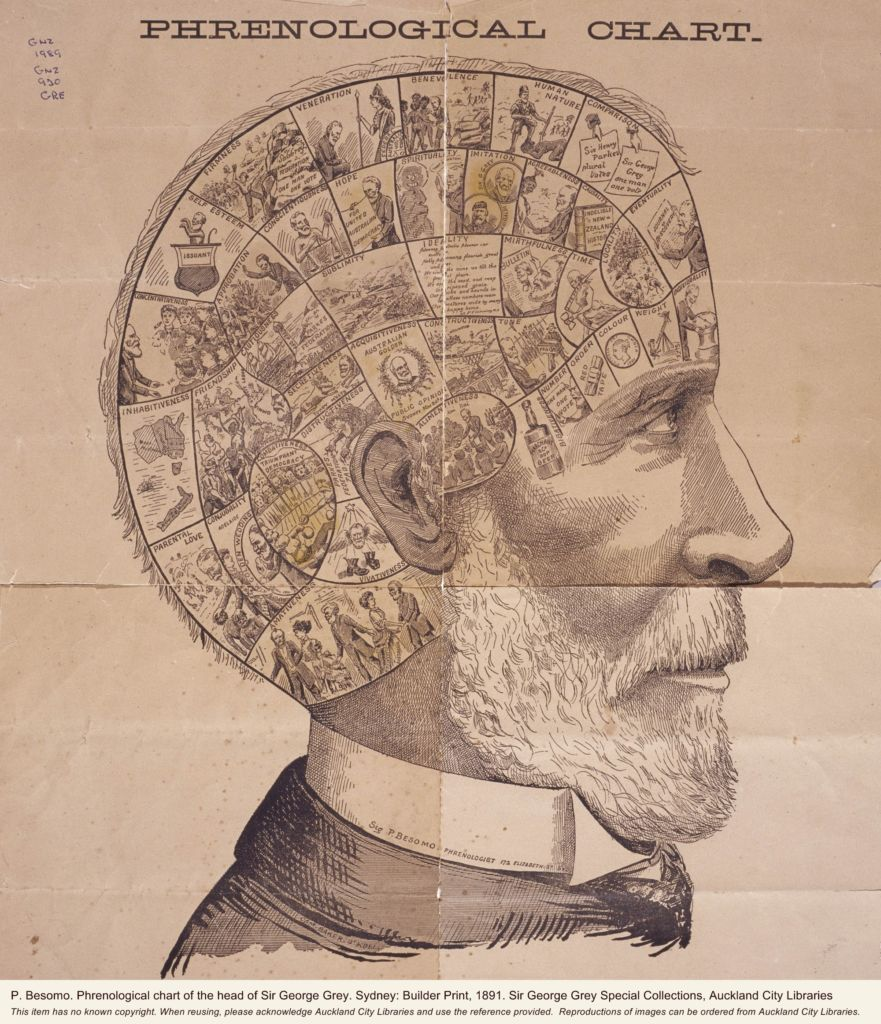 p-besomo-phrenological-chart-of-the-head-of-sir-george-grey-sydney-builder-print-1891-sir-george