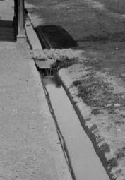 Detail of drainage channel alongside Colombo Road.