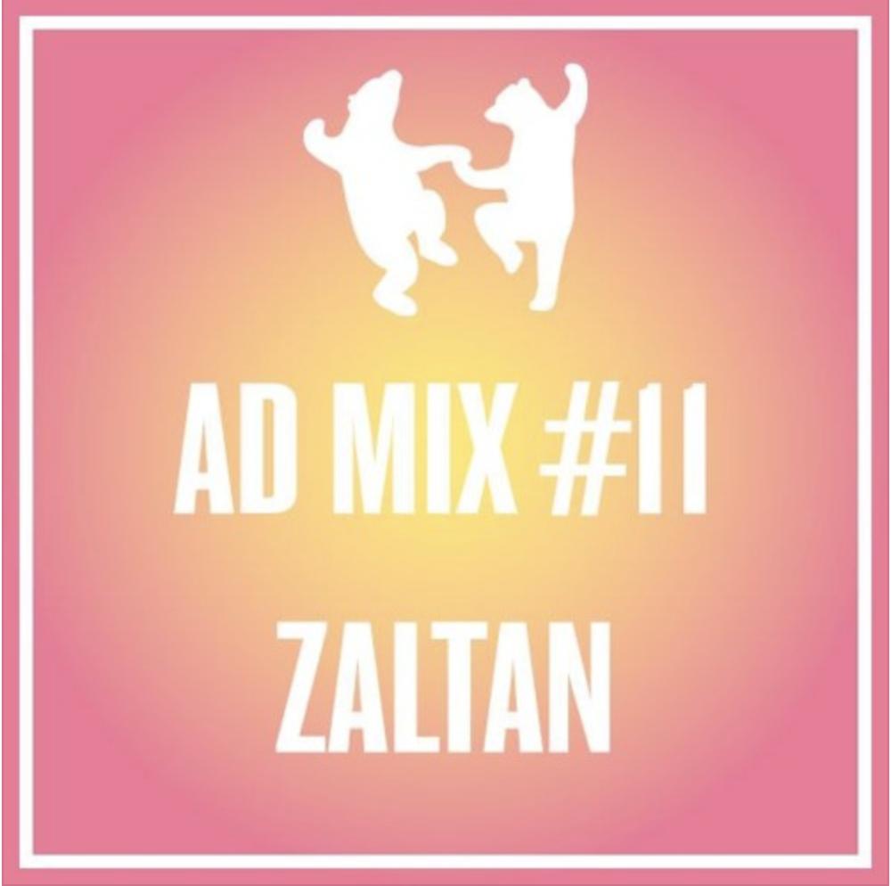 Zaltan Mix #11