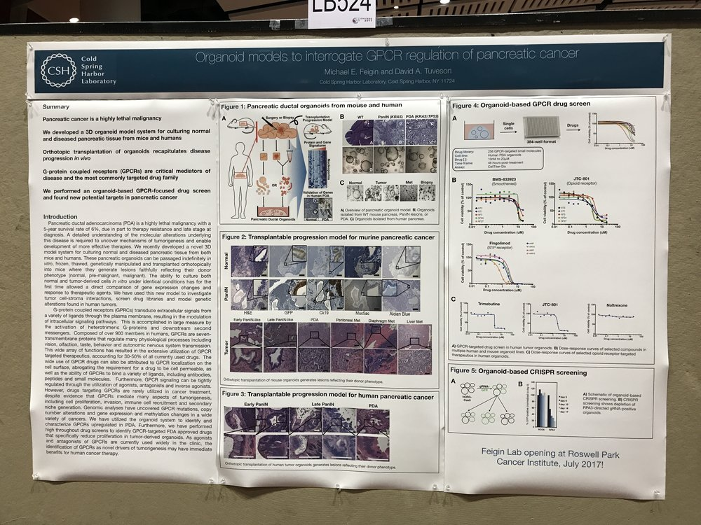 Last poster as a postdoc . . .