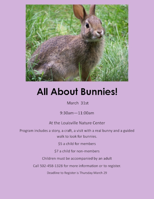 All About Bunnies!.jpg