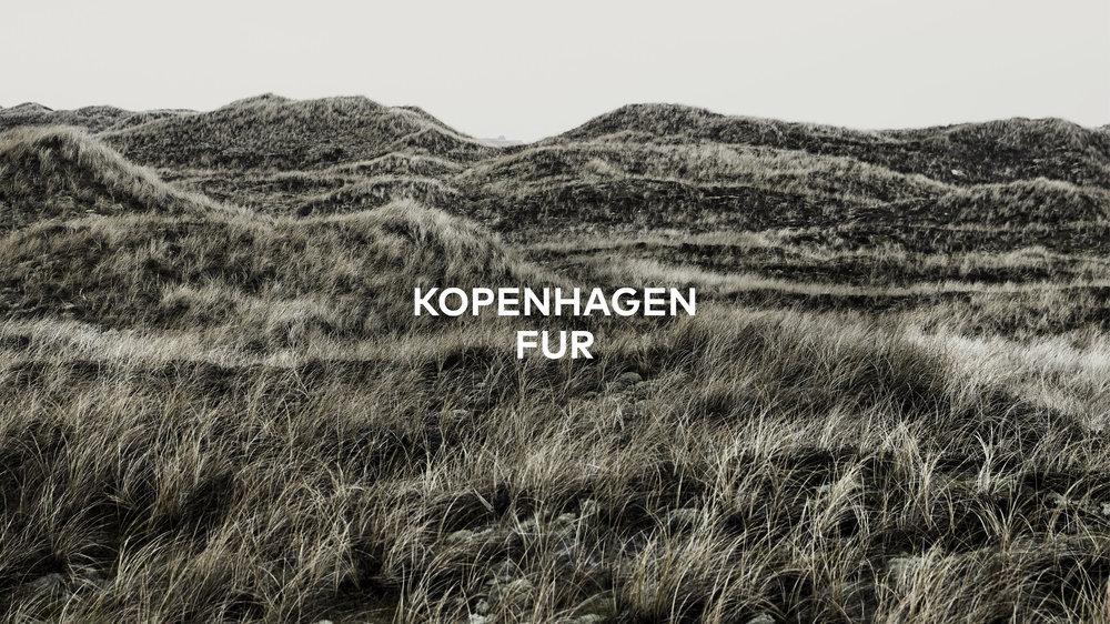 Fireball_Cases_KopenhagenFur.jpg