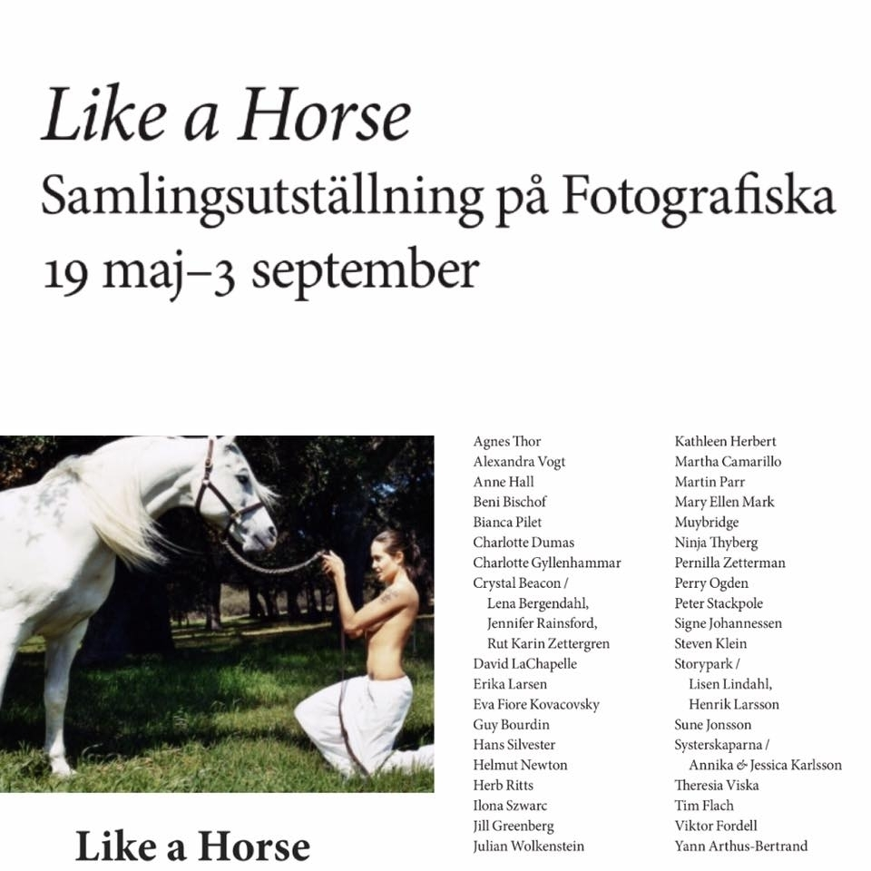 Exhibition at Fotografiska, Stockholm - We appear in the group exhibition