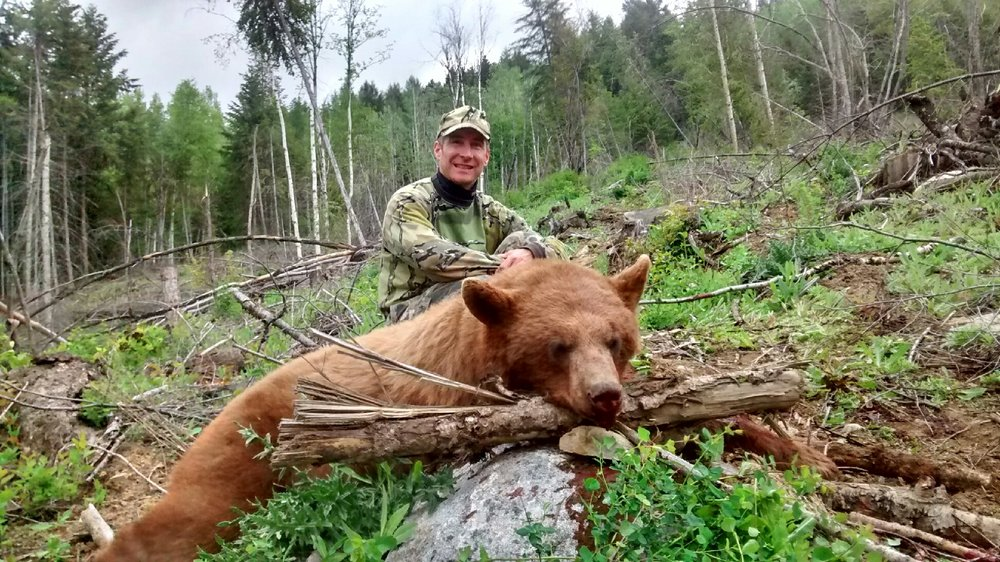 Washington State- Spring Bear, 2016   423 yards, Savage LRH 7mm Rem Mag