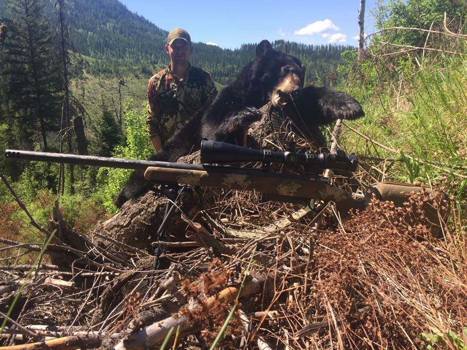Washington State- Spring Bear, 2017   616 yards, Custom .338 Norma Mag