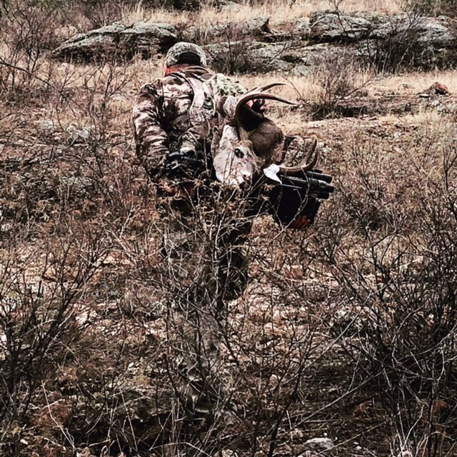 My 2018 Coues Deer being packed out
