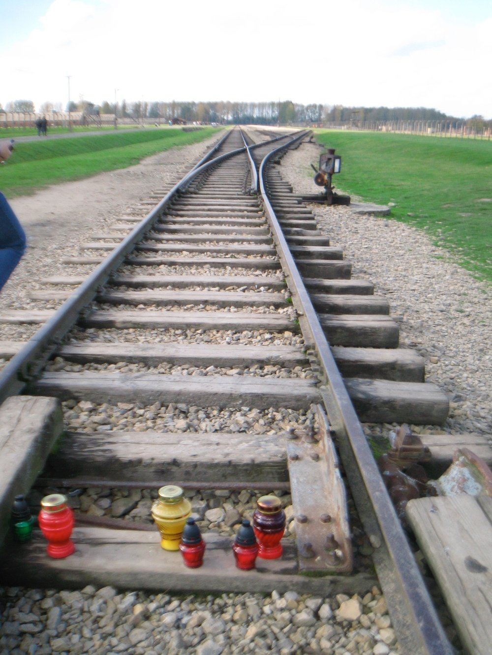 These are the infamous train tracks at Auschwitz.