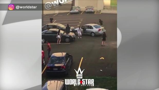 Police probe wild brawl in Mississauga parking lot