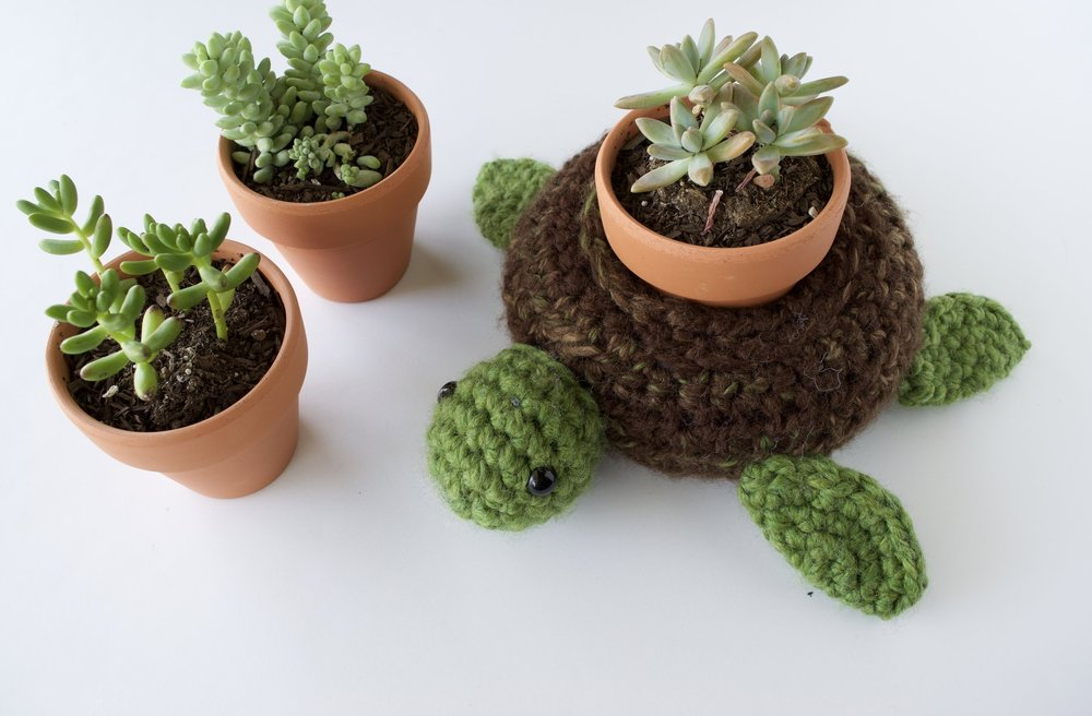 World Turtle Succulent Holder - Home Decor
