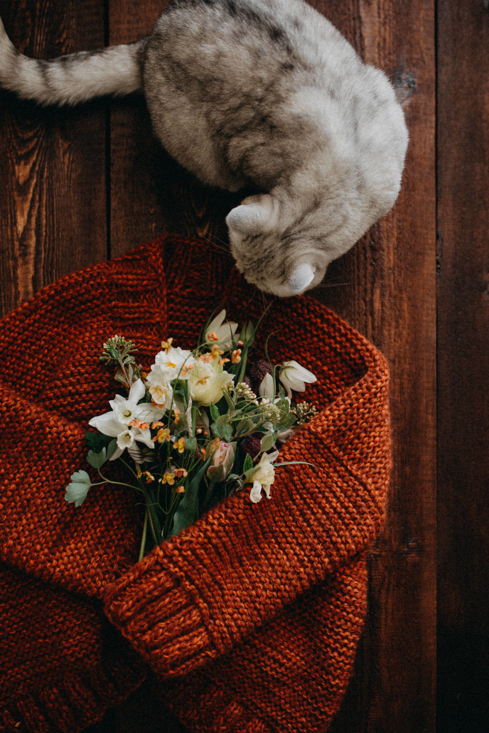 cat-with-flowers