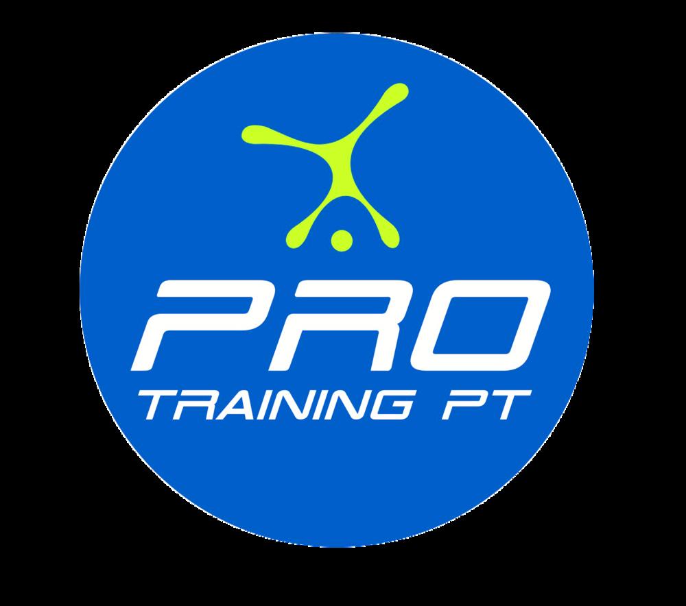 Pro PT - Round logo blue copy.png