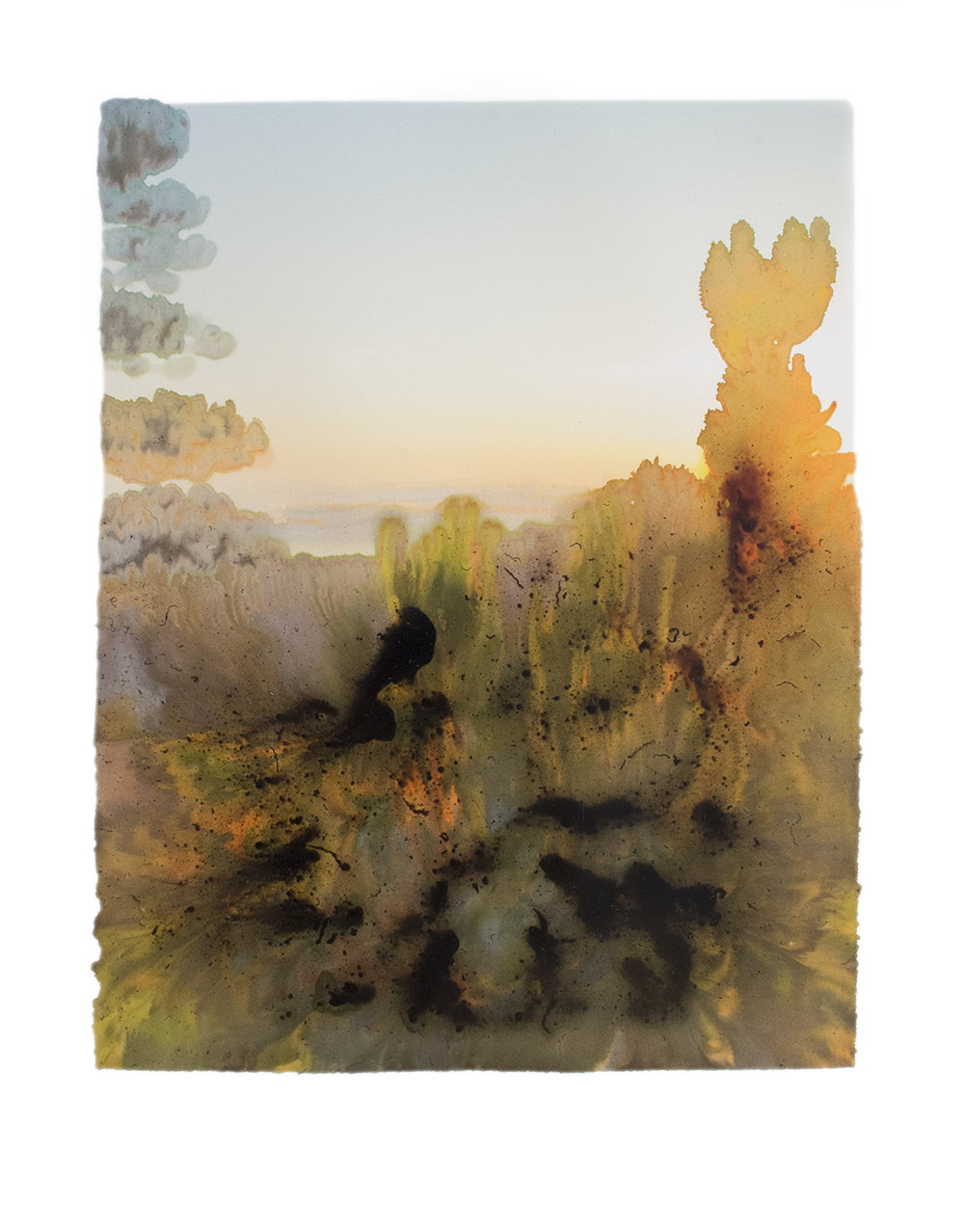 Big Sur, CA,Archival Pigment Print Photograph, unique, 2015 [from the series Subject to Change]