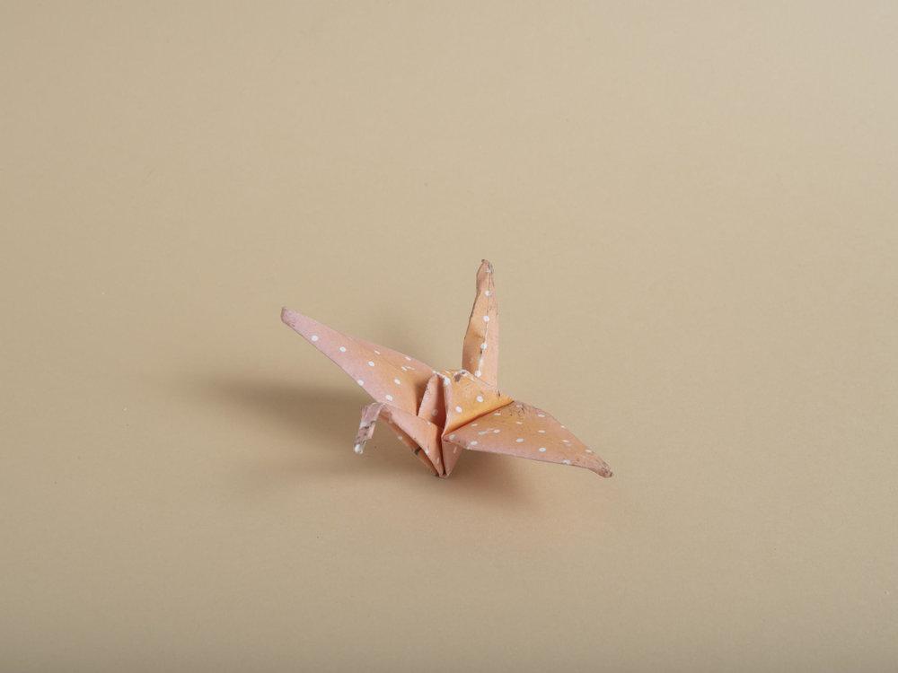 Andres Gonzalez American Origami Group Study 1.jpg