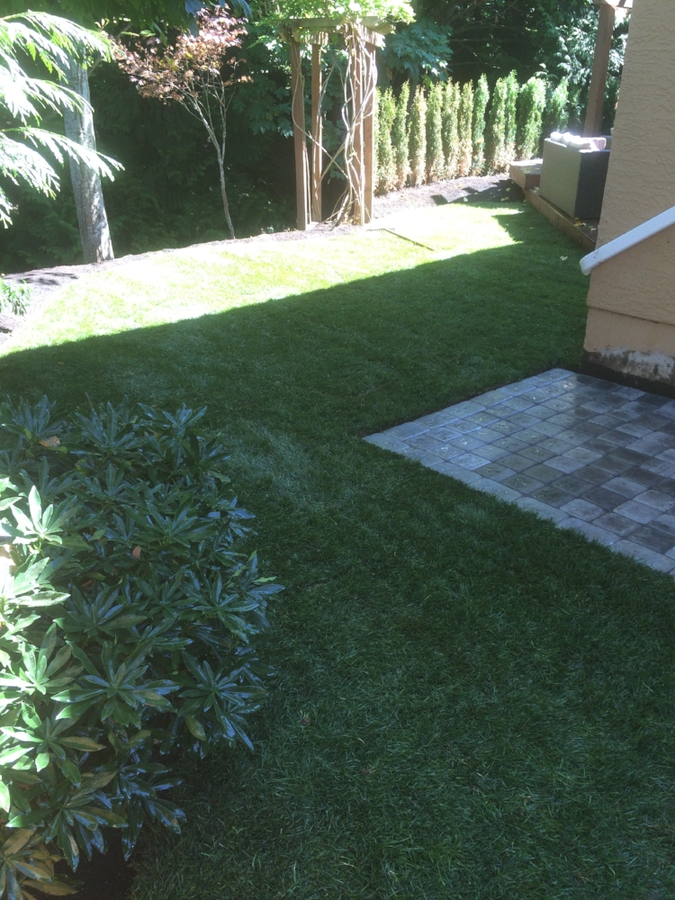 paver patio and turf installation - north nanaimo - jinglepot landscaping