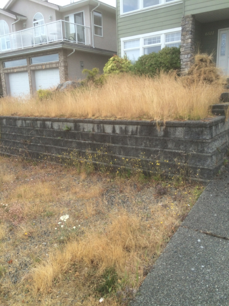 before - groveland landscaping nanaimo