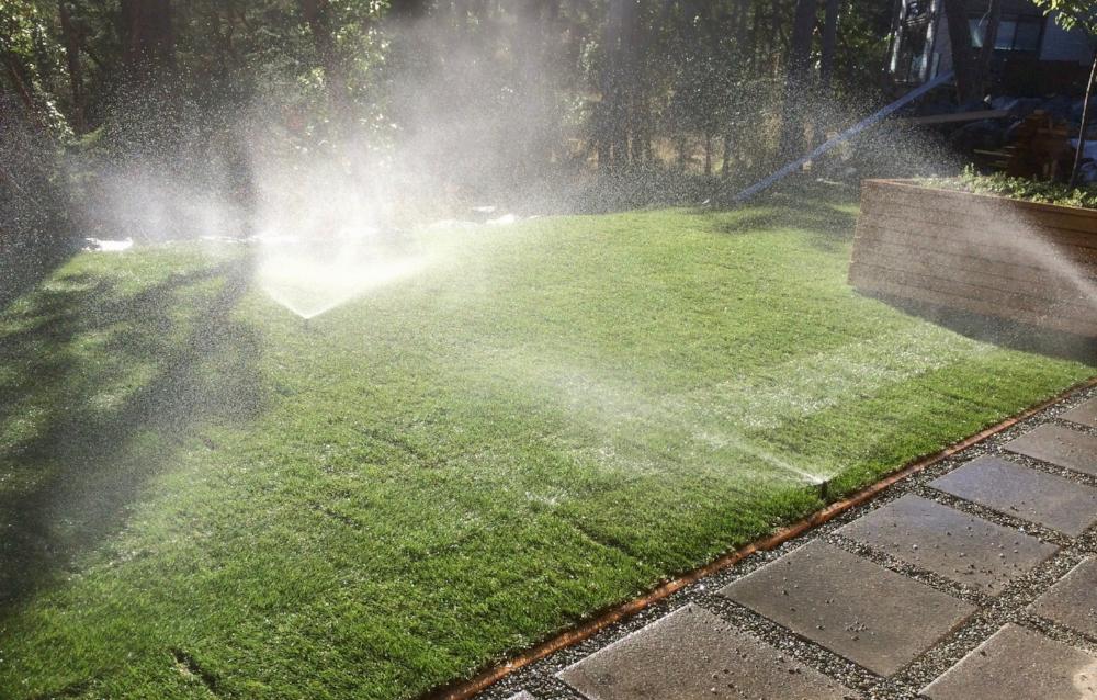 new sprinkler system - landscapes nanaimo