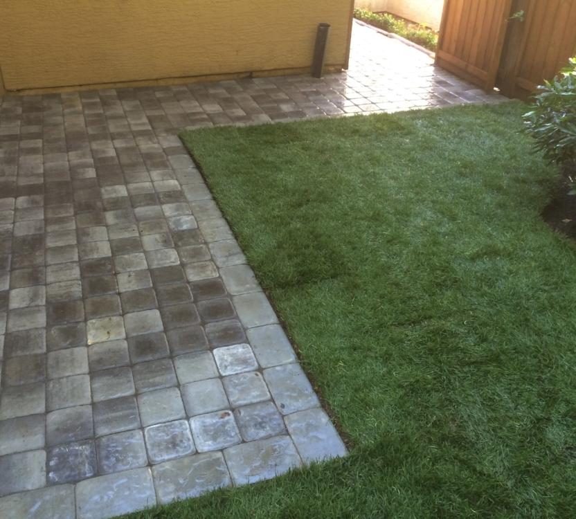 paver patio and walkways - basic design - nanaimo
