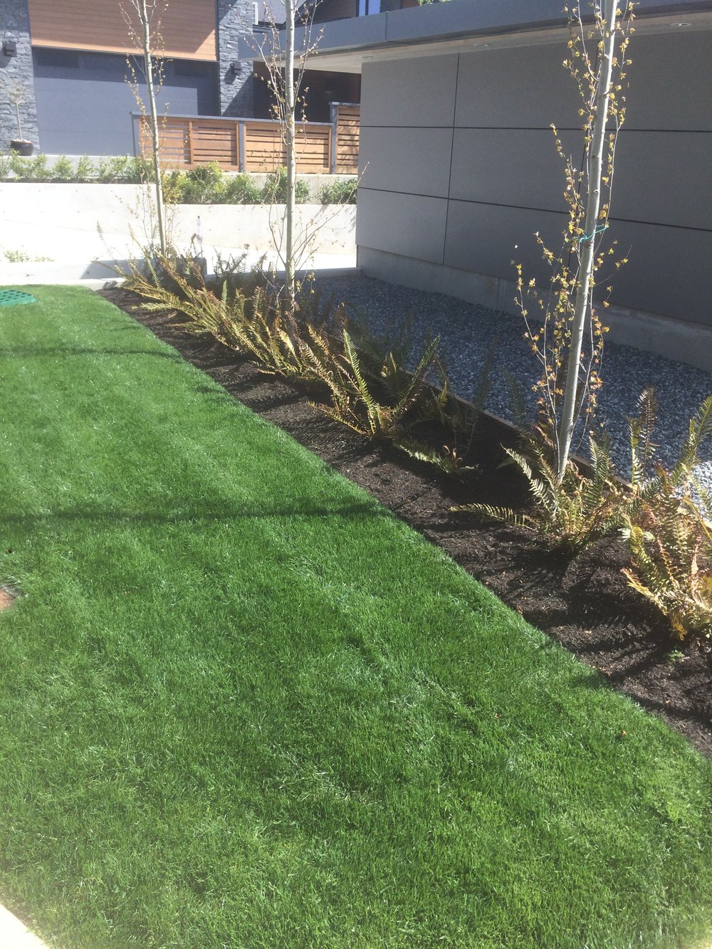 glen oaks spec house - nanaimo landscapers