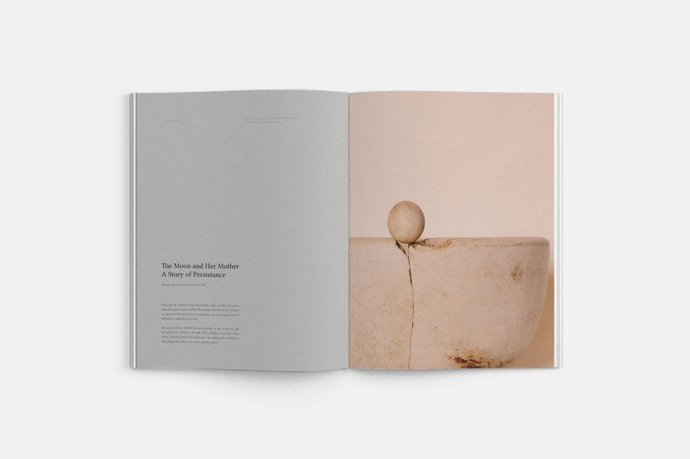 water-journal-volume-five-1.jpg