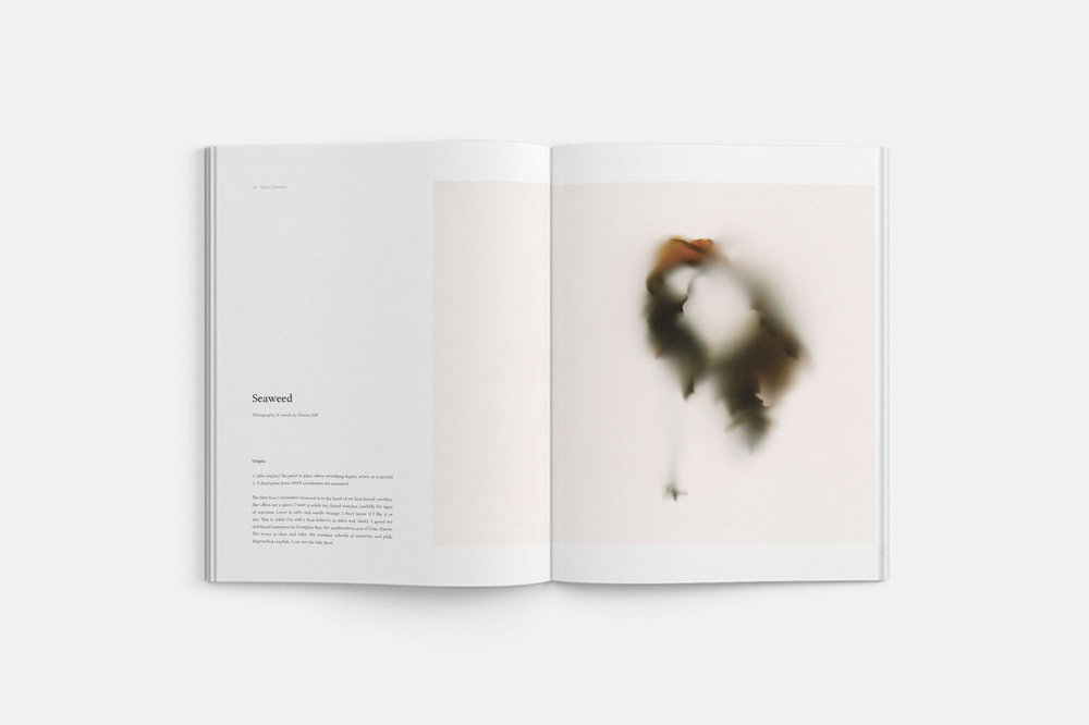 water-journal-volume-three-5.jpg