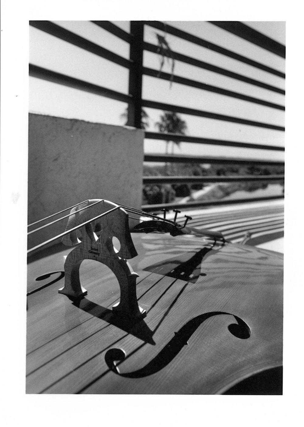 Cello, Silver Gelatin Print