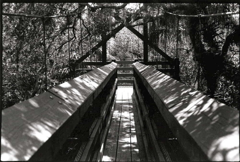 Gate of the Forest, Silver Gelatin Print