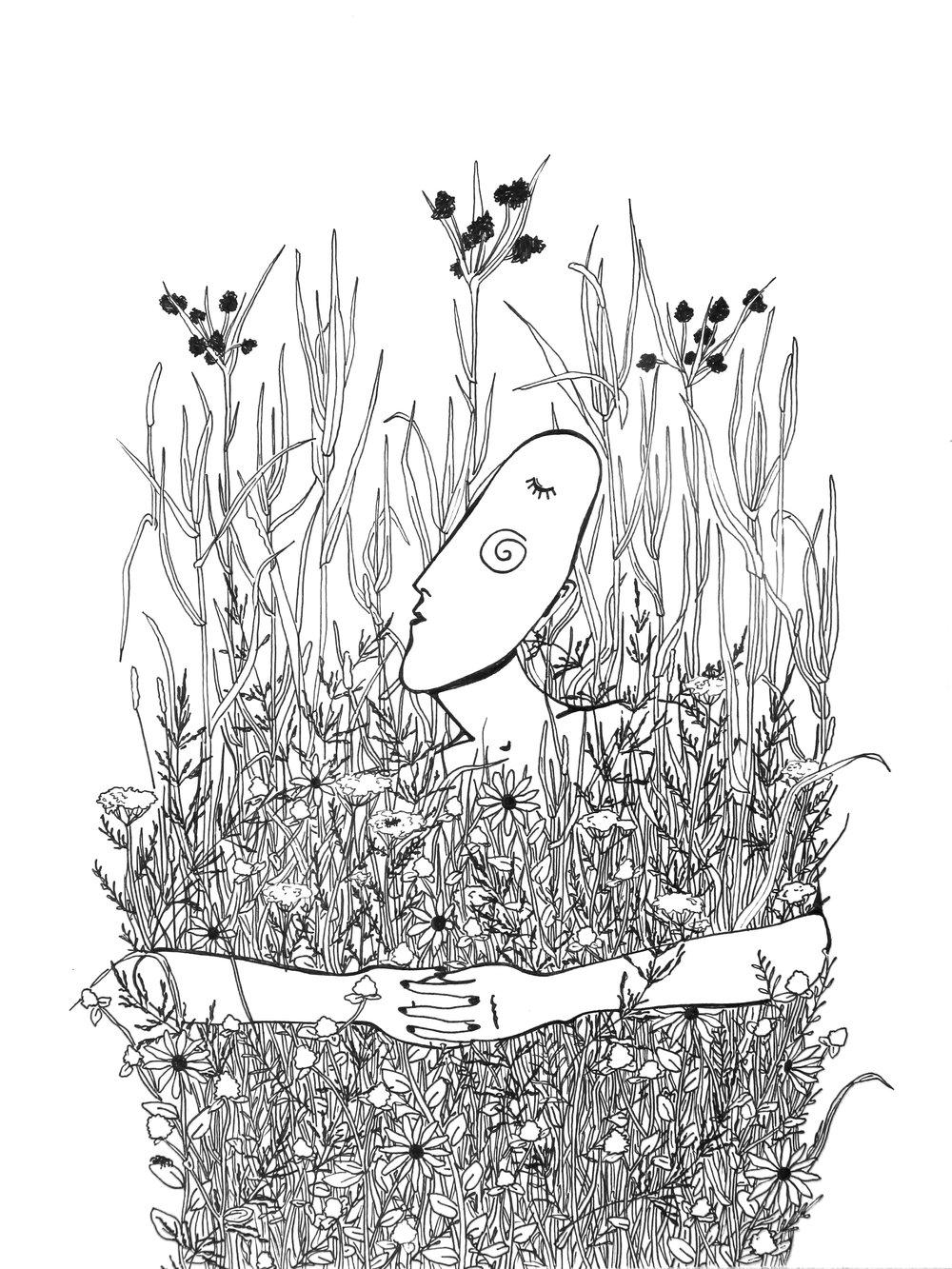 Boreal Wild Grasses