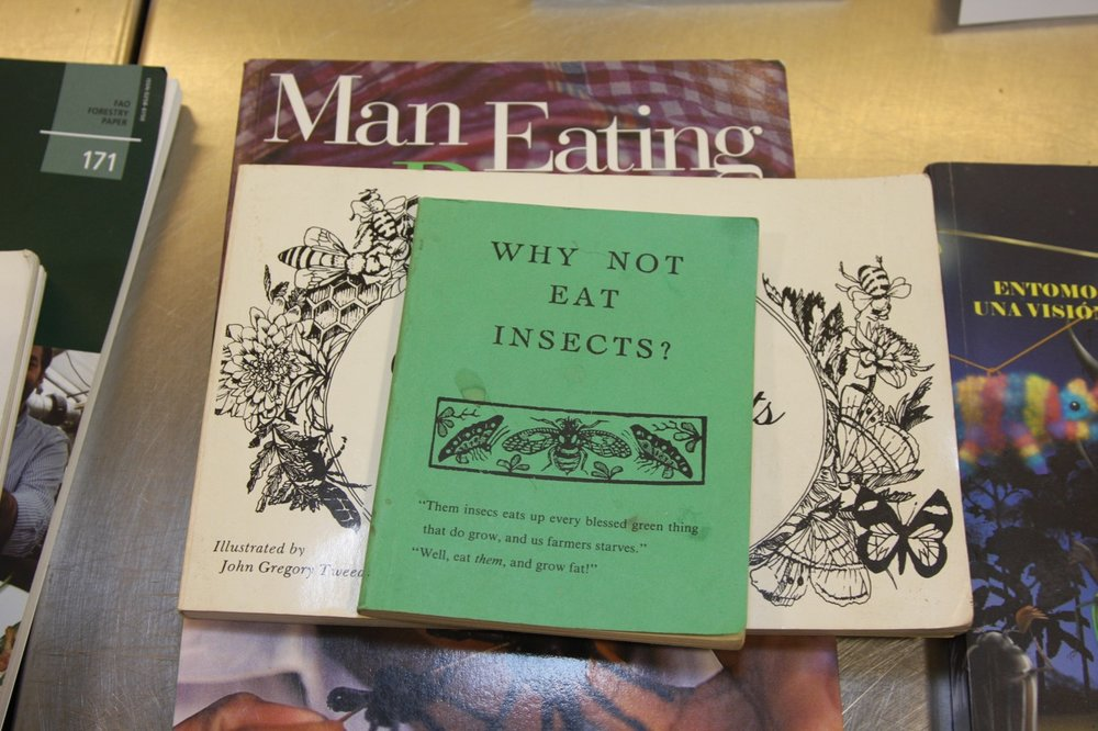 How to Cook and Eat Insects