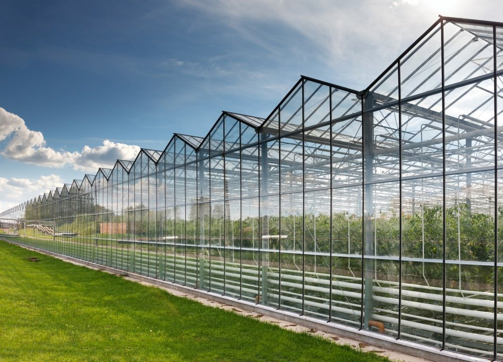 Commercial greenhouses