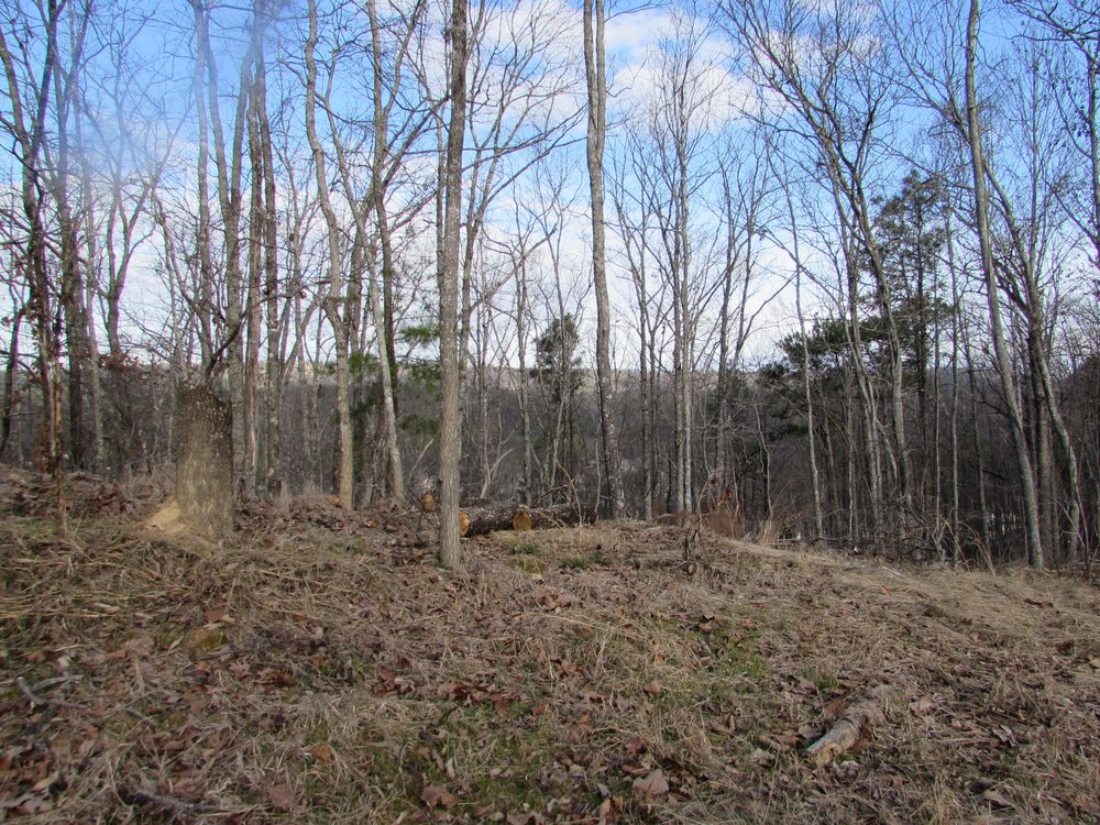 Homesite #61   List Price: $175,000     Size: 1.9 acres  Section: Pelham  Street: Oakridge Way