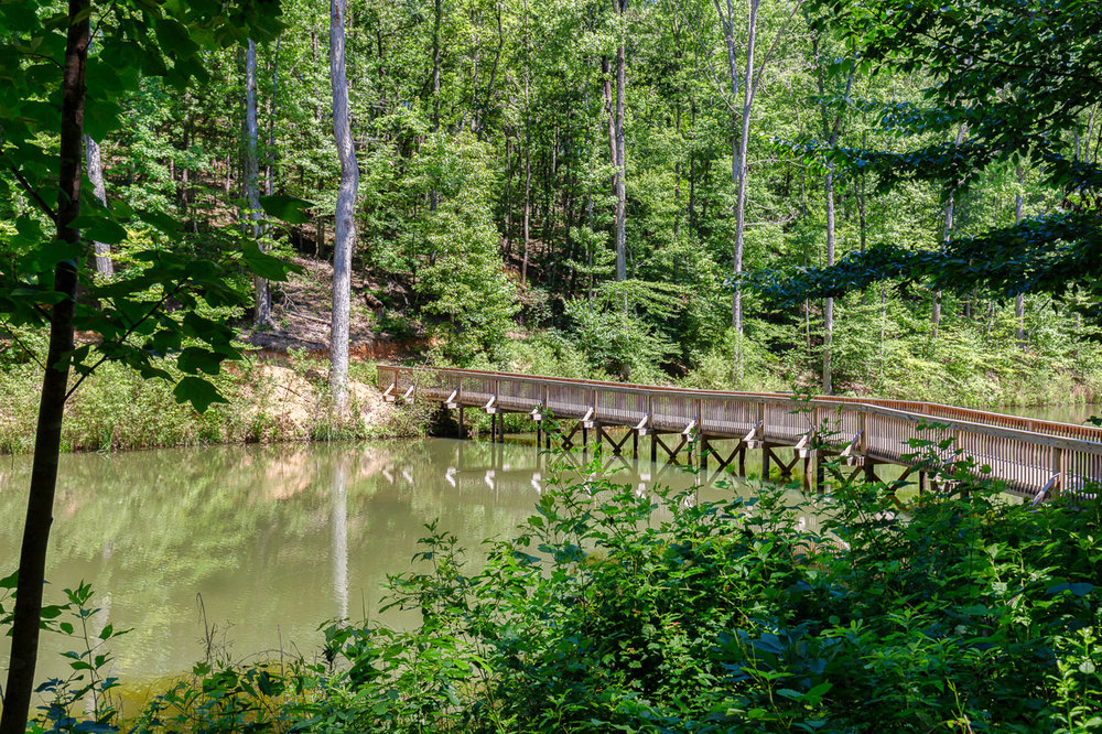 Emerald Lake--3.jpg
