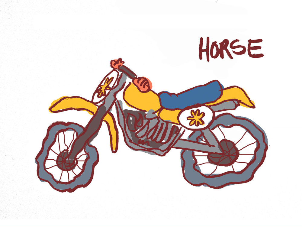 newhorse.jpg