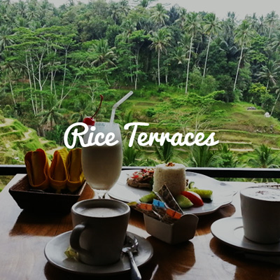 Lunch next to Rice Terraces in Bali