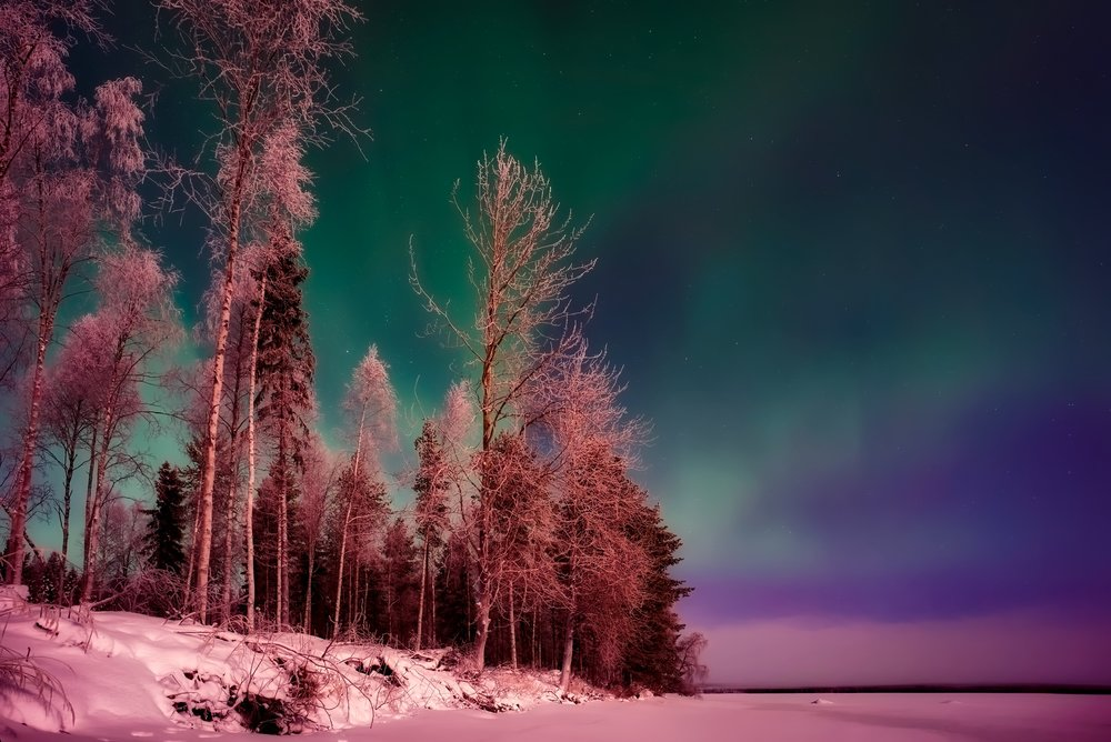Green, Red, Pink colours of Northern Lights on Display on Clear Skies